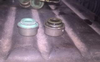 Как на Ланосе 1,5 и Шансе 1,5 заменить сальники клапанов или маслосъемные колпачки: когда нужно менять, признаки, выбор, артикул