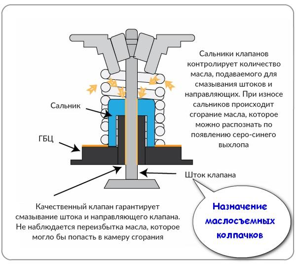 Схема устройства и назначение маслосъемных колпачков